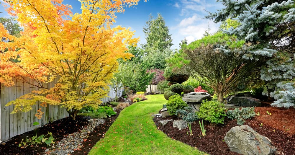 47 Amazing Backyard Landscaping Ideas (Pictures)
